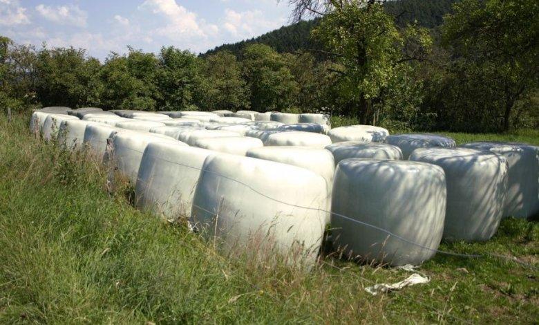 Usuwanie folii rolniczej i innych odpadów pochodzących z działalności rolniczej